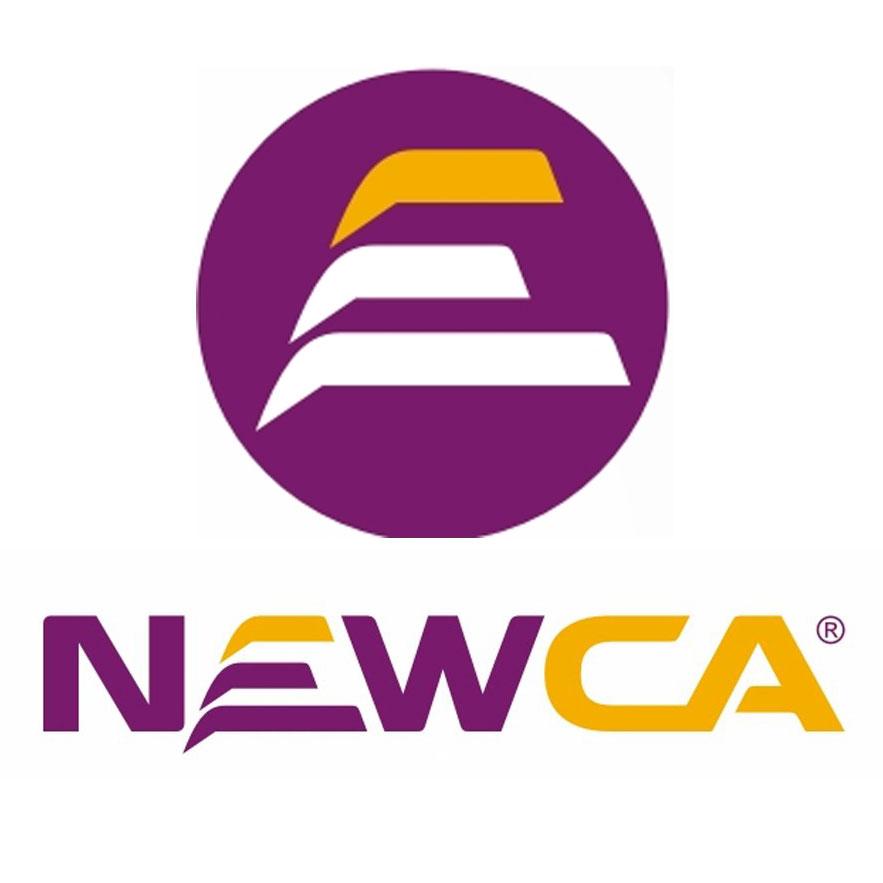 Chữ ký số NEW-CA
